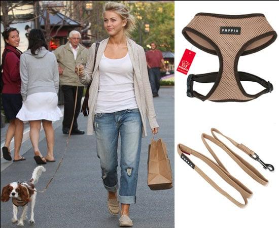 Found! Julianne Hough's Harness Set