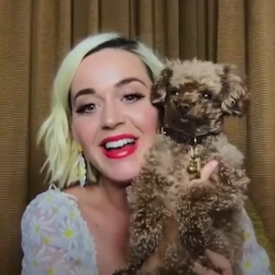 Watch Katy Perry Surprise a Fan as Her Substitute Teacher