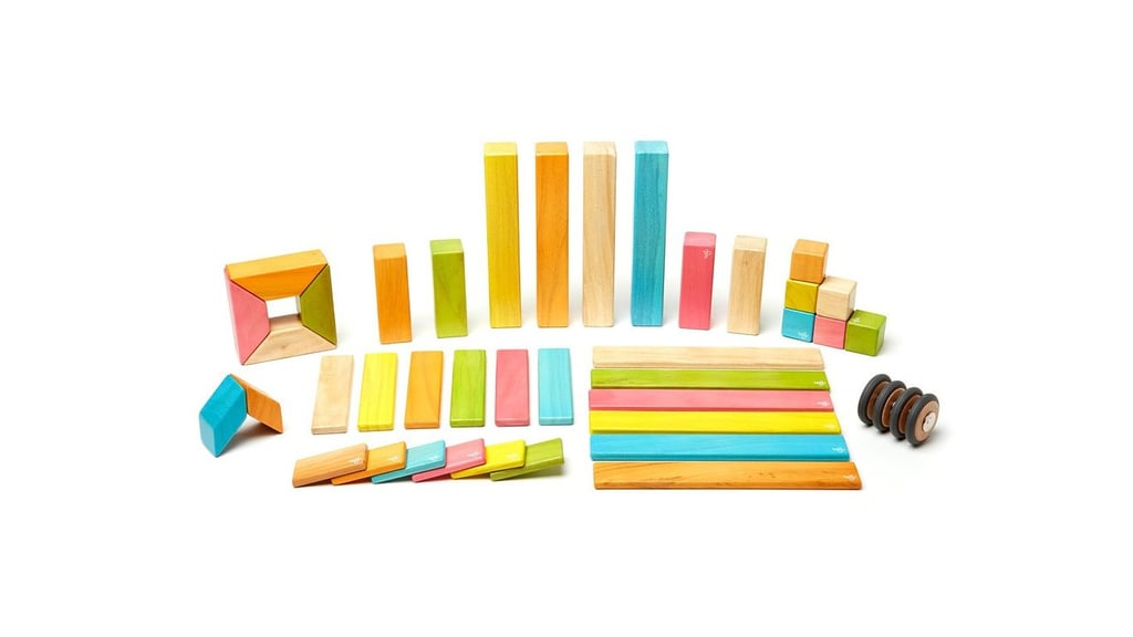 Tegu 42-Piece Block System
