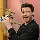 Richard Madden posed with a pooch on the Miami set of Despierta America on Thursday.