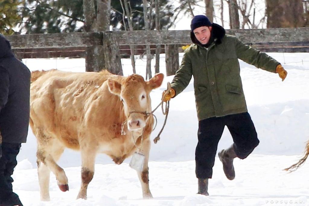 He seemed happiest when he was herding cattle.
