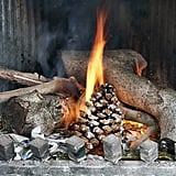 Homemade Pinecone Fire Starter