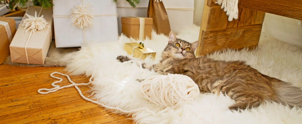 59 Purr-fect Gifts For the Cat-Lovers in Your Life
