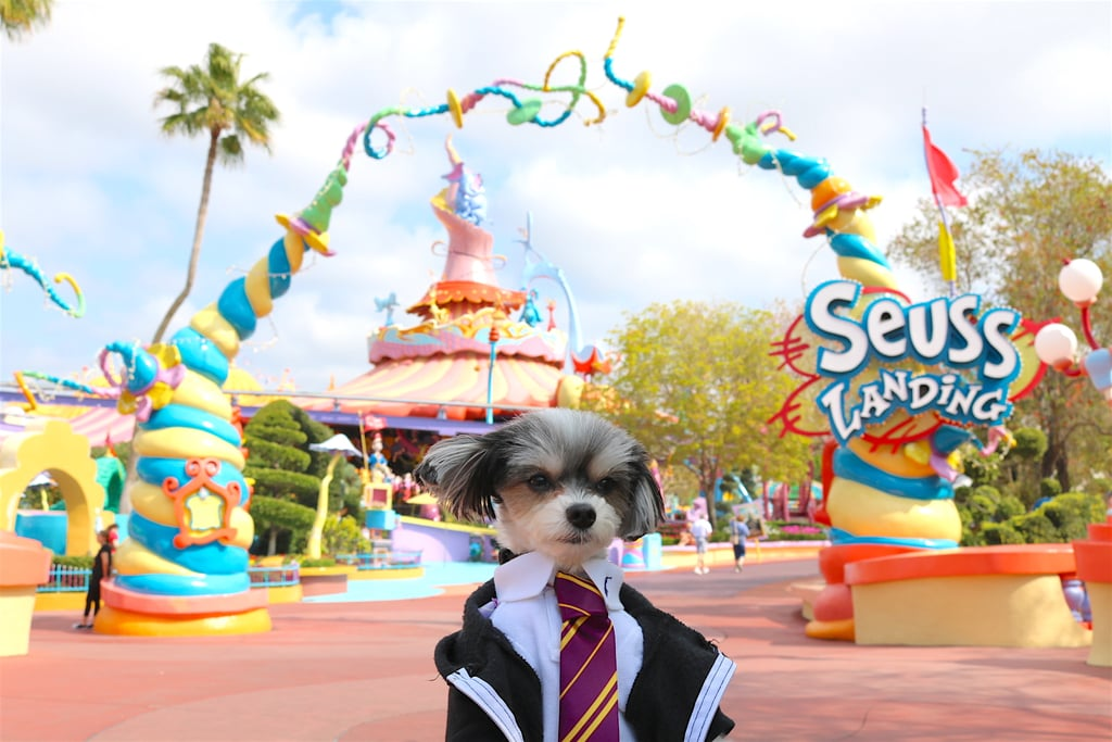 Then it was off to Seuss Landing, where I met lots of new friends!