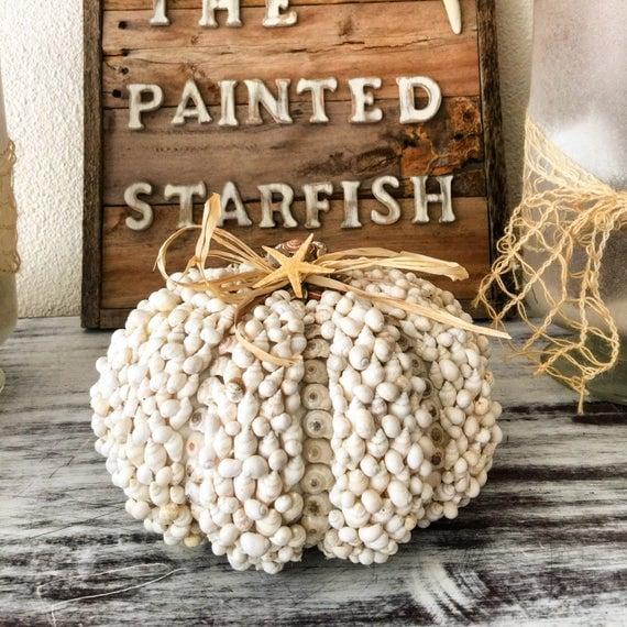 Seashell Pumpkin