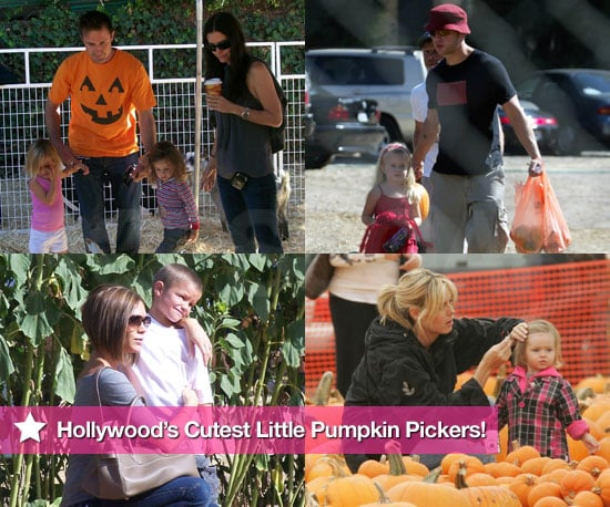 Pictures of Celebrities With Kids at Pumpkin Patch