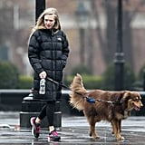 Despite the rainy weather Amanda Seyfried and her Australian Shepherd, Finn, made time for a quality walk in NYC in December 2012.