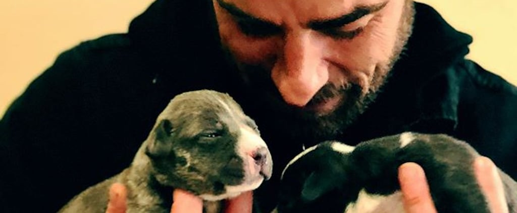 Relatable: Justin Theroux Plays With Puppies in the Wake of His Split From Jennifer Aniston