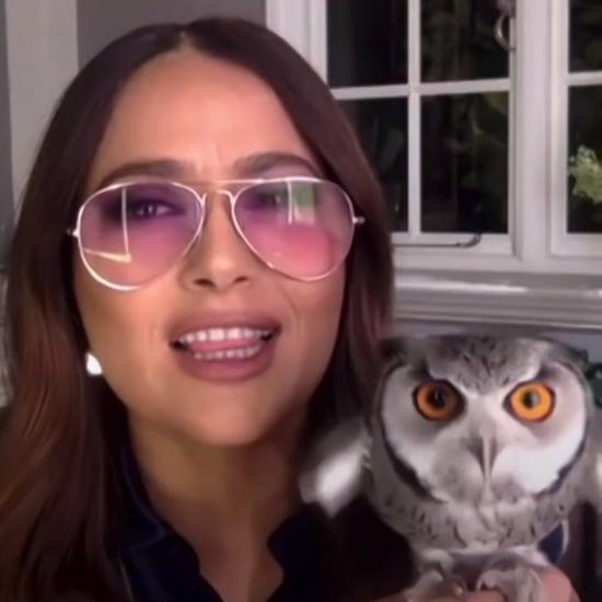 Salma Hayek's Pet Owl Threw Up on Harry Styles