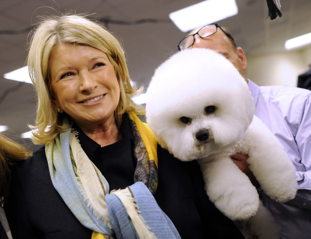 Martha Stewart poses with a Bichon Frise backstage. Congrats to Martha and her Chow Chow Ch Pazzazz's Genghis Khan for winning best of breed!