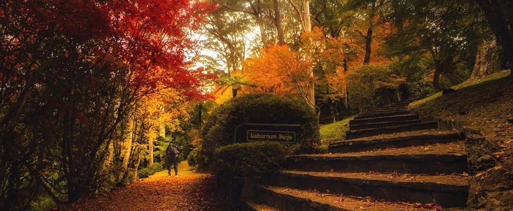 Australia's Breenhold Gardens in the Fall