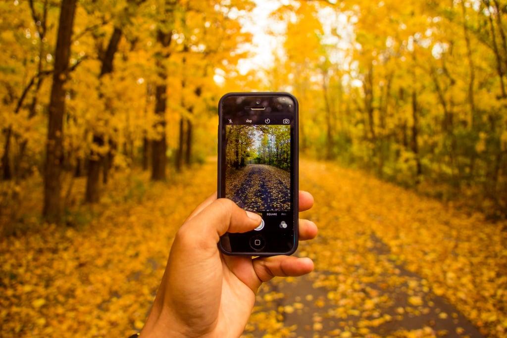 Take Fall Instagram photos.