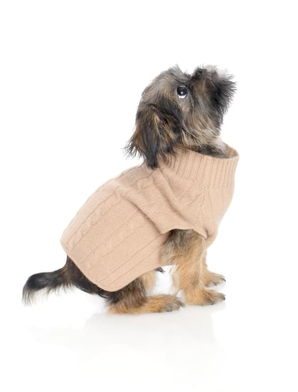 Brooks Brothers | Cashmere Cable Dog Sweater (Now $49)