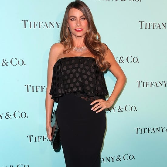Sofia Vergara's Lawyers Issue a Statement on Embryo Lawsuit