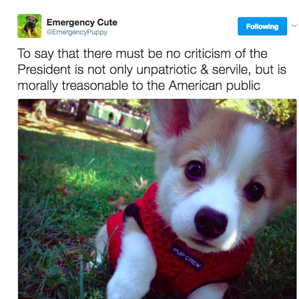 Emergency Cute Tweets About Donald Trump