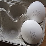 Educate yourself on the egg's shelf life.