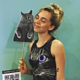 If you don't dress like a cat and pose with cats, what are you even doing at CatCon?