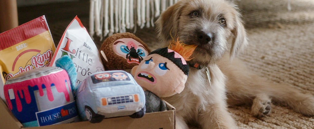 Home Alone BarkBox and Super Chewer Toys and Treats | 2020