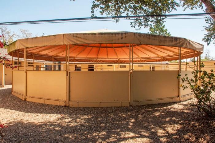 Oprah Buys Montecito Horse Farm