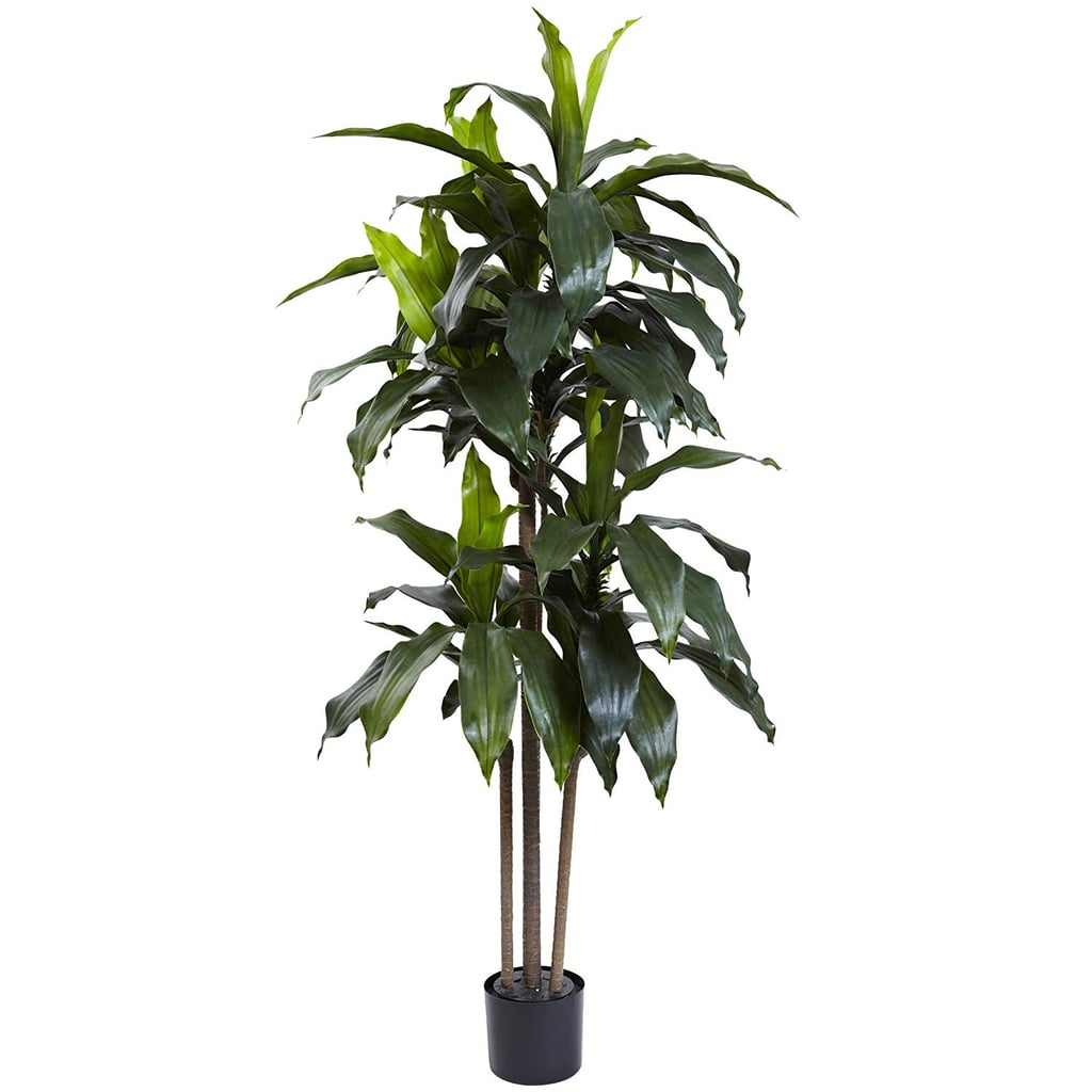 Nearly Natural Dracaena Indoor/Outdoor UV Resistant Plant