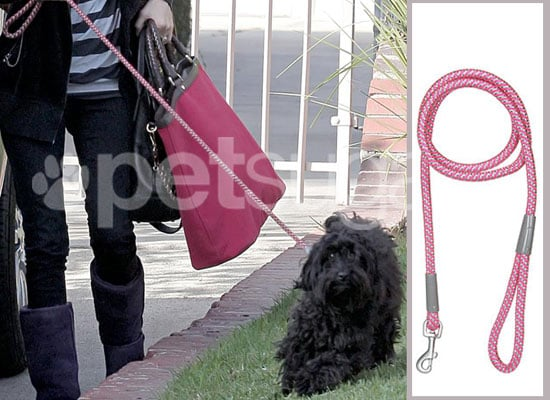 Found! January Jones's Roped Leash