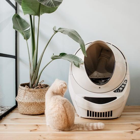 Litter-Robot 3 Connect Review