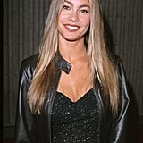 Sofia Vergara's Light Brown Hair Color