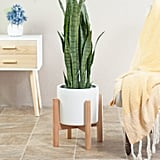 Bratcher Ceramic Pot Planter with Plant Stand