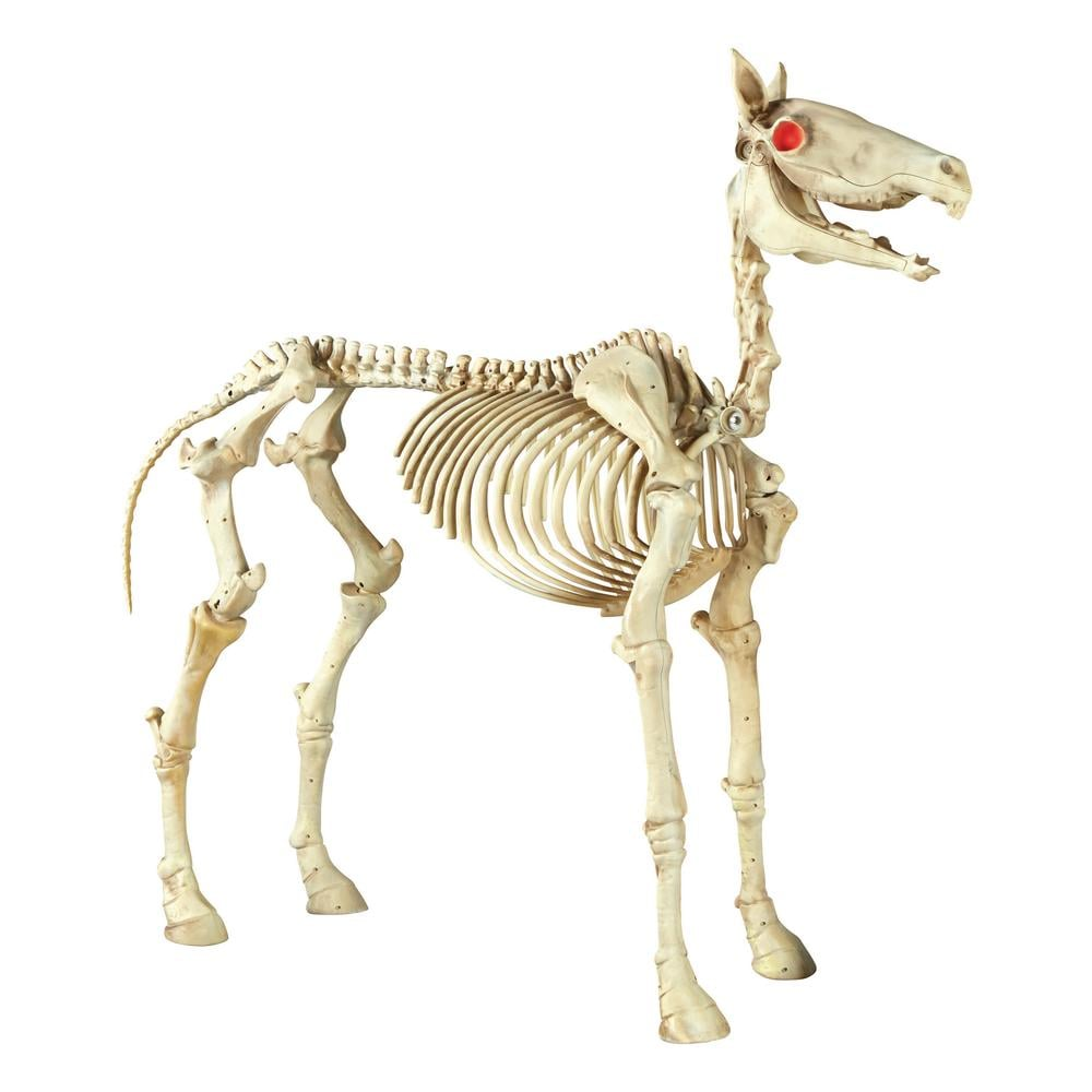 Home Depot Flexible Props : Halloween standing skeleton horse home depot