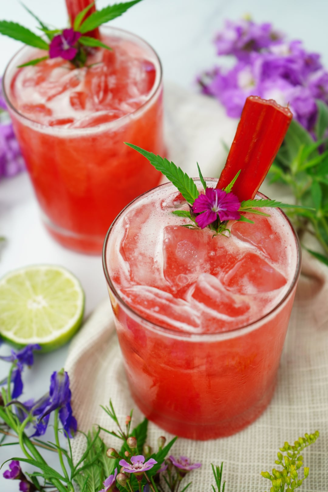 Raspberry Rhubarb CBD Spritz