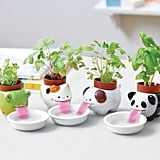 Peropon Drinking Animal Planter
