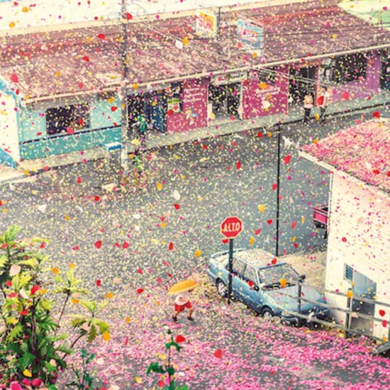 Flower Petal Shower in Costa Rica