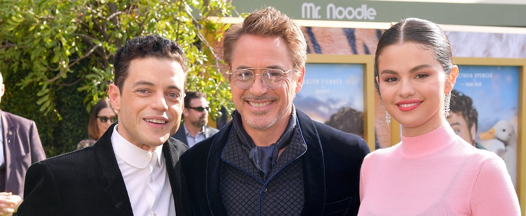 Celebrities at the Dolittle Premiere in LA   Pictures