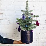 Farmgirl Flowers Blue Ridge Mountain Christmas Tree