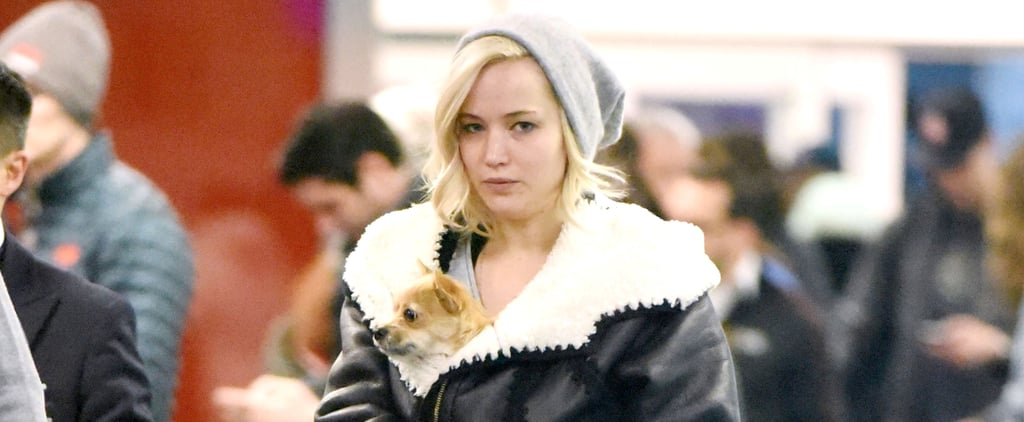 Jennifer Lawrence Keeps Herself — and Her Dog — Warm at the Airport