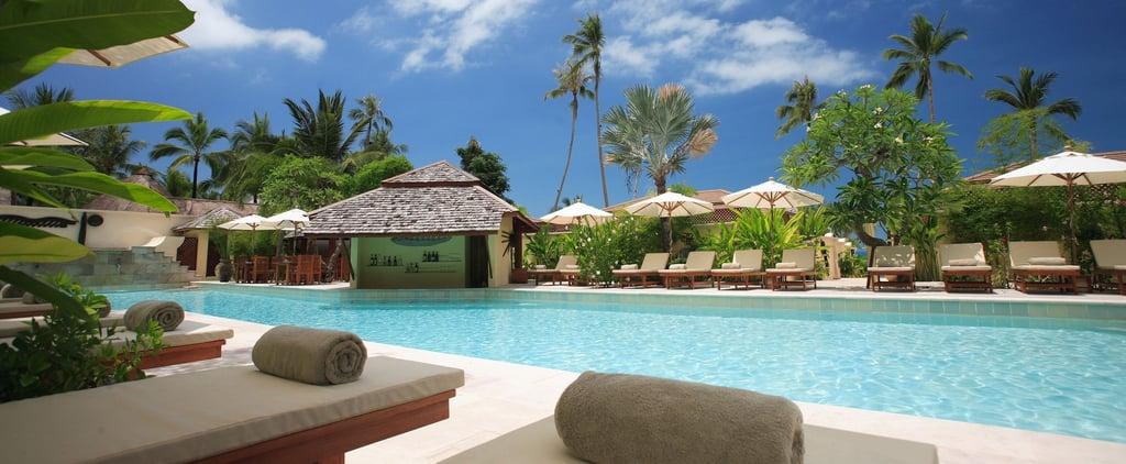 Airbnb تطلق خدمة Airbnb Luxe للارتقاء بتجارب السفر الفاخرة