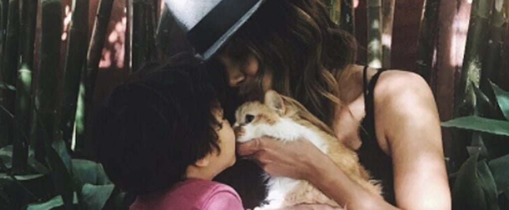 Halle Berry's Heart Is Broken as She Mourns the Death of Her Cat, Playdough