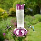 Perky-Pet Our Best Wine Base Glass Hummingbird Feeder