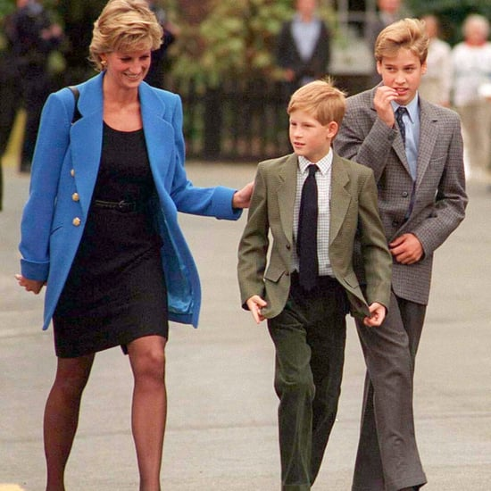 Prince William and Prince Harry Quotes About Princess Diana