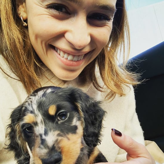 Emilia Clarke's New Puppy Ted Is Adorable! — Photos