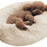 BinetGo Donut Calming Cat Bed