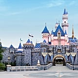 Disneyland Sleeping Beauty Castle Zoom Background
