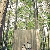 Wooded Backdrop