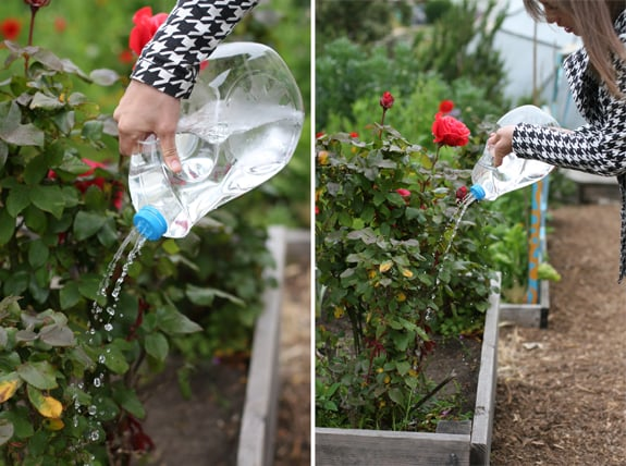 Upcycled Watering Jug
