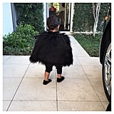 North West Taking a Stroll