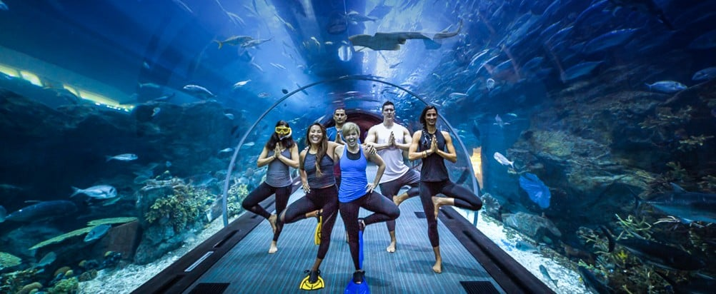 People Are Doing Yoga Underneath the World's Largest Suspended Aquarium For the Coolest Reason
