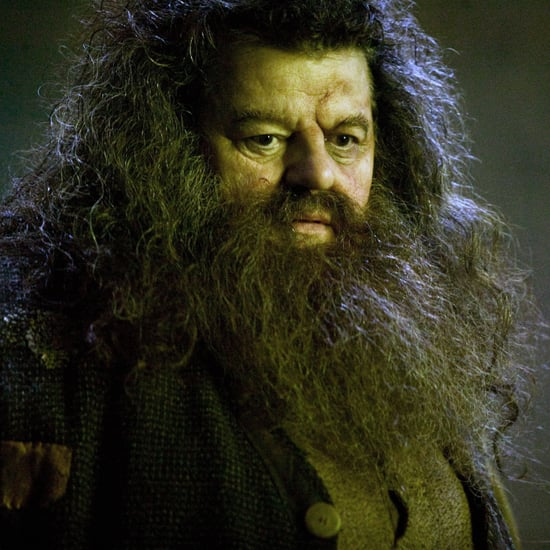 Harry Potter Hagrid Reddit Theory