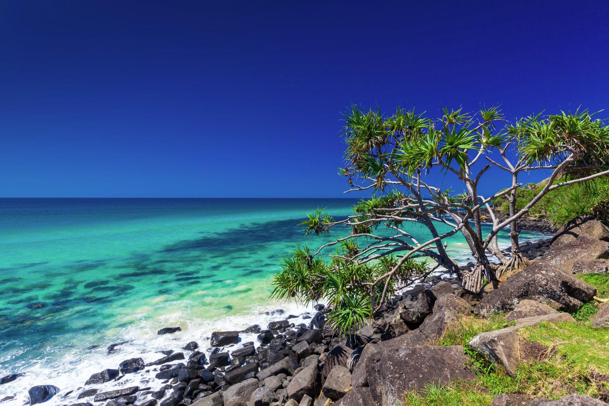 Best Tropical Island Songs
