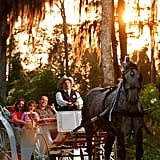 You Can Enjoy an Evening Carriage Ride at Disney's Fort Wilderness Campgrounds