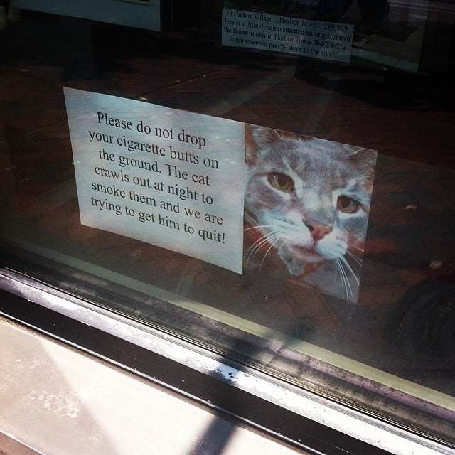 Don't Contribute to Kitty's Nicotine Habit